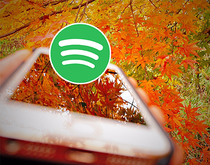 Spotify logonew2